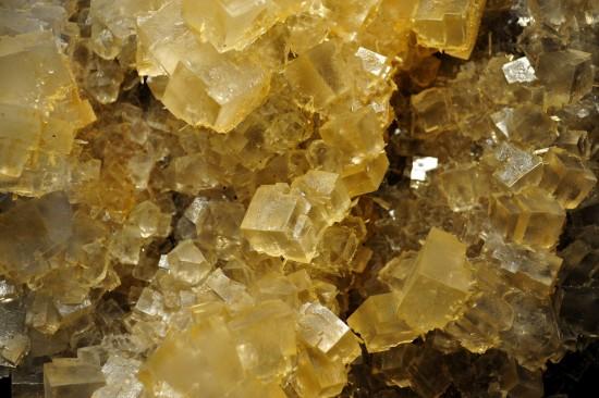 Halit, Sylvin, Gips; Kaliwerk Bleicherode, Südharz, Thüringen; Mineralogische Sammlung TU BAF